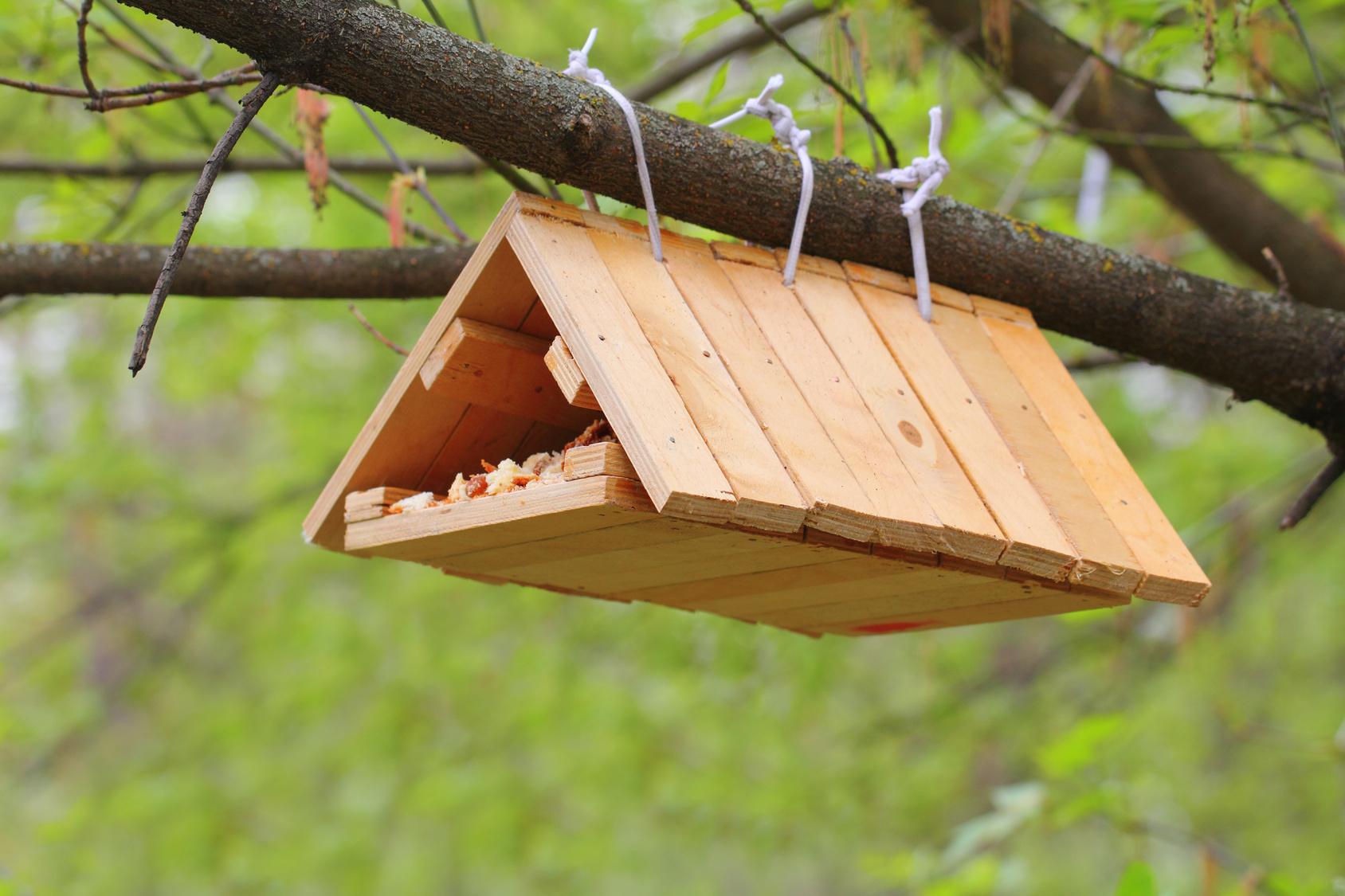 vogelhaus nistkasten einfach selber bauen worauf achten. Black Bedroom Furniture Sets. Home Design Ideas